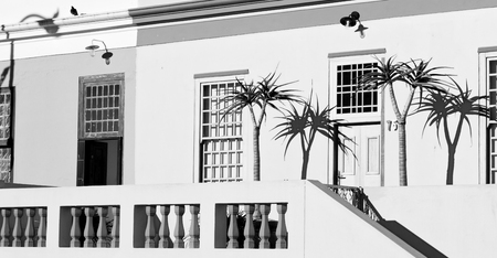 blur in south africa cape town    bo kaap architecture   like   texture background