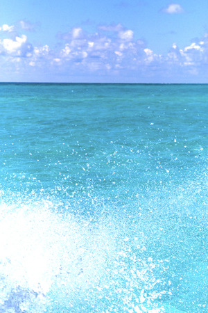in mexico froath and blue  foam in the sea drop sunny day