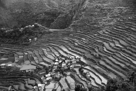 river county: blur  in  philippines  terrace field for coultivation of rice  from banaue unesco site Stock Photo