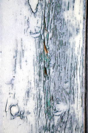 rusty nail: sumirago varese   abstract   rusty brass brown knocker in a  door curch  closed wood lombardy italy