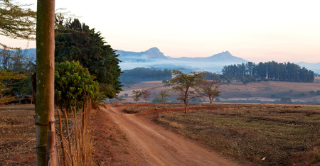 fissure: blur in swaziland   mlilwane wildlife  nature  reserve mountain and tree