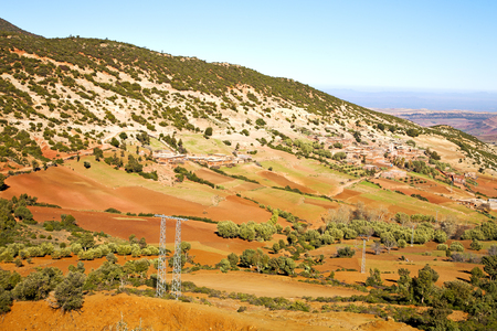 dades valley in atlas moroco africa ground tree  and nobody Stock Photo