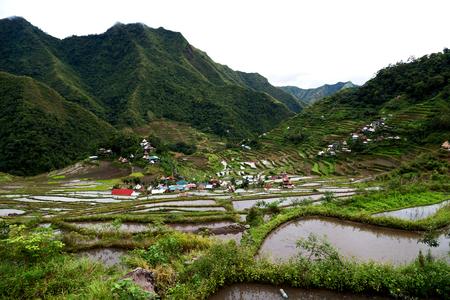 Desenfoque En Campo De La Terraza De Filipinas Para