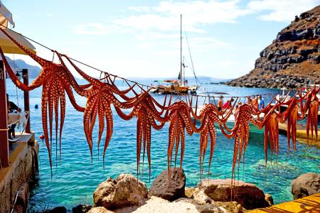 octopus het drogen in de zon Europa Griekenland Santorini en licht Stockfoto
