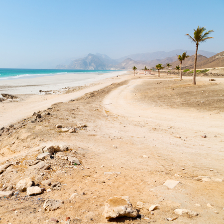 sur: near sandy beach sky  palm   and mountain in oman arabic sea  the hill