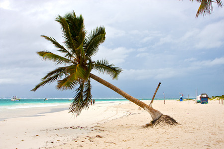 navigable: paradise beach in mexico palm in the  blue lagoon relax and boat