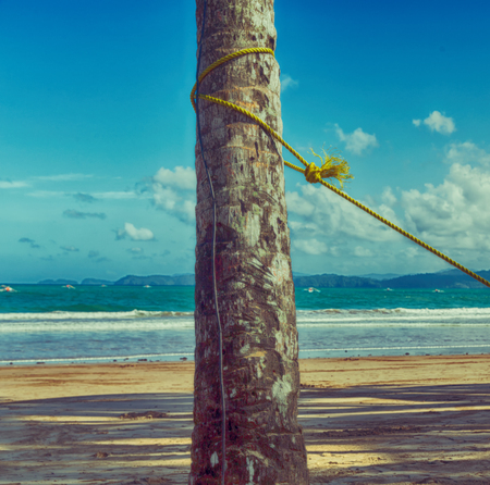 blur  in   philippines  a rope from an hammock near the ocean shore and cloud