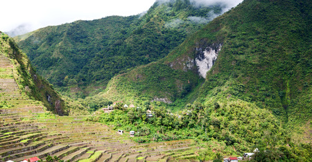 blur  in  philippines  terrace field for coultivation of rice  from banaue unesco site Stock Photo