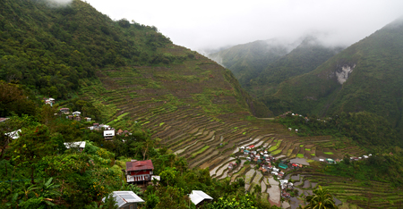 blur  in  philippines  terrace field for cultivation of rice  from banaue Stock Photo