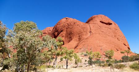 olgas: in  australia natuarl park the hill and mountain near tree and bush