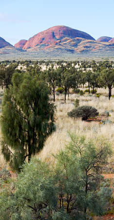 olgas: in  australia the concept of wilderness environment in the landscape outback