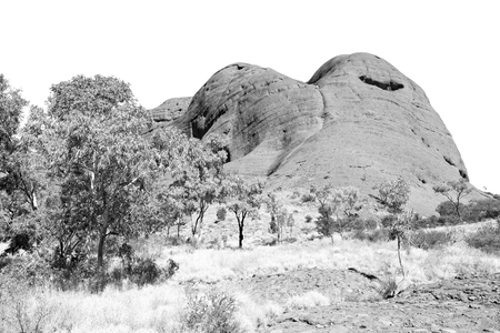The concept of wilderness environment in the landscape outback Stock Photo