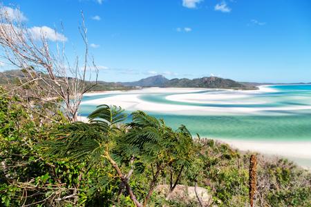 オーストラリアでは、楽園の概念のようなウィットサンデー島のビーチとリラックス 写真素材