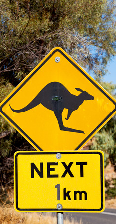 in australia  the sign for wild kangaroo  likee  concept of safety Stock Photo