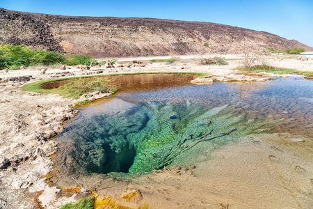 in  danakil ethiopia africa  the volcanic depression  of dallol and pole ale