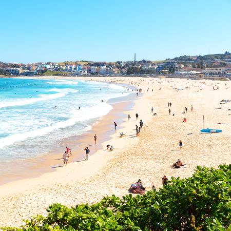 in  australia people in  bondie  beach and the resort  near ocean