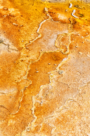 in  danakil ethiopia africa  the volcanic depression  of dallol and pole ale like abstract background