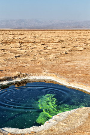 in  danakil ethiopia africa    the black lake with boiling oil and hot