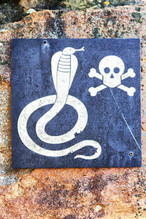 in south africa the metal signal of the danger for wild snake and the skull and bones in a rock concept od fear
