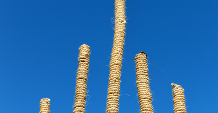in   ethiopia africa  bamboo and rope abstract in the sky concept of differences Stock Photo