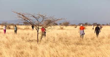 in   ethiopia africa  in the  national park tourist looking for wild animals