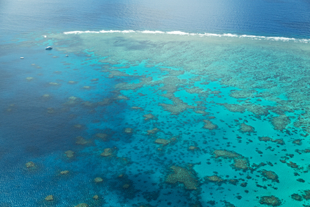 in  australia natuarl park the great reef from the high concept of paradise 版權商用圖片