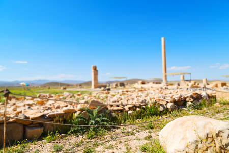 Old temple and grave column in Pasargad, Iran