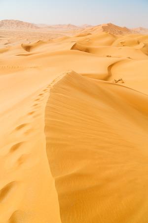 the empty quarter and outdoor  sand dune in oman old desert rub al khali  Foto de archivo