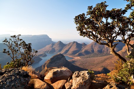 blur  in  south africa  blyde river canyon plant rock and pond water    Archivio Fotografico