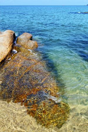 kho samui  bay isle white  beach    rocks in thailand asia and south china sea