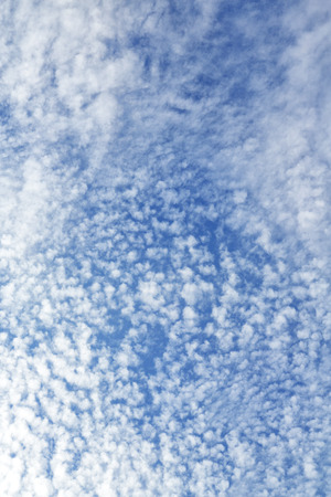 in the sky lots of clouds and space like concept of freedom and haven