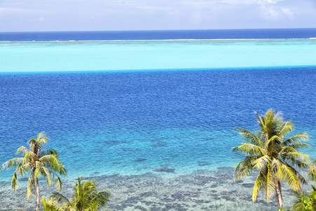 in polynesia bora bora the view in the coastline lagoon and palm like paradise concept and relax