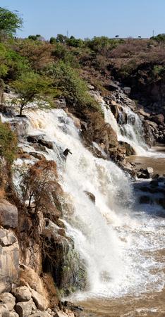 in äthiopien afrika der awash nationalpark und die wilde wasserfälle Standard-Bild