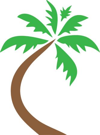 Palm Tree icon Clip Art