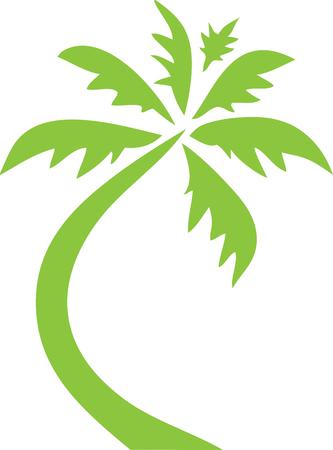 Palm Tree icon Clip Art Green