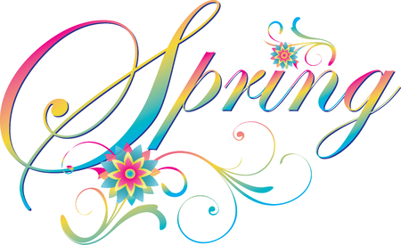Spring Scroll Banner with Flowers Illustration