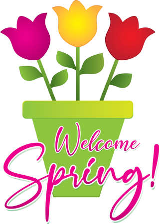 Spring Banner with Flower Pot of Pink Tulips 일러스트