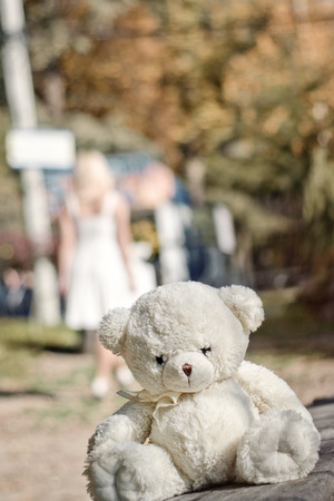 singly: Lonely teddy bear in the summer garden