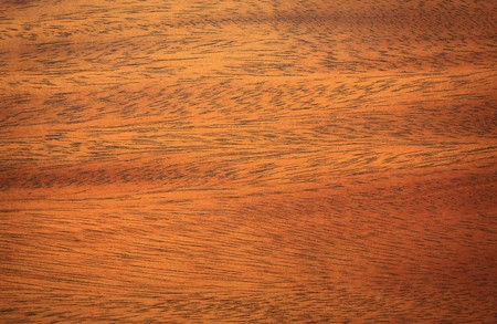 paneling: mahogany wood texture close up