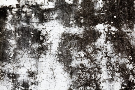 cracked cement wall Stock Photo - 7841353