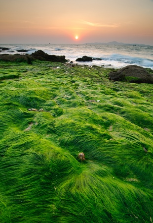 pattaya: Seascape of pattaya beach at sunset, Chonburi, Thailand
