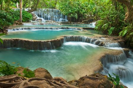 Kuang Si Waterfall, Luang prabang, Laos 스톡 콘텐츠