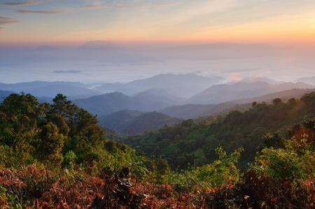 ミスティ ・ マウンテンの朝、Huay ナム ダン国立公園、チェンマイ、タイで