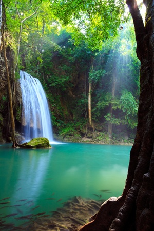 Erawan Waterfall, Kanchanaburi, Thailand Stock Photo - 10996219
