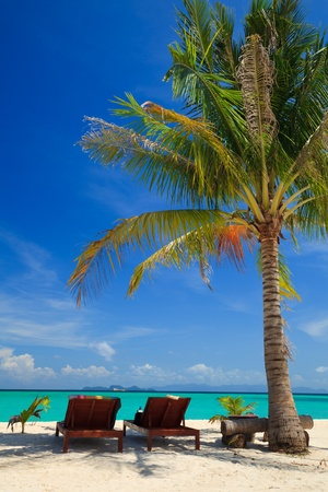 Beach chairs under a palm tree on Lipe island, Thailand Stock Photo - 11569225