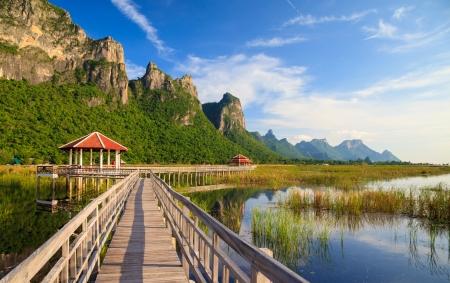 sam: Wooden Bridge in lotus lake at khao sam roi yod national park, thailand