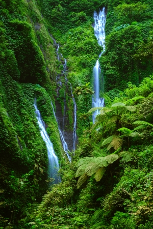 torrent: Madakaripura  Waterfall, East Java, Indonesia Stock Photo