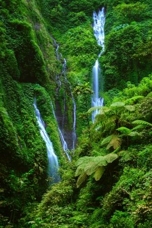 cataract waterfall: Madakaripura  Waterfall, East Java, Indonesia Stock Photo