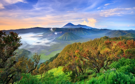 Bromo vocalno at sunrise, East Java, , Indonesia Reklamní fotografie