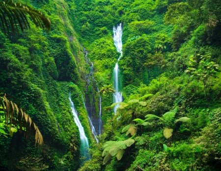 Madakaripura  Waterfall, East Java, Indonesia Imagens